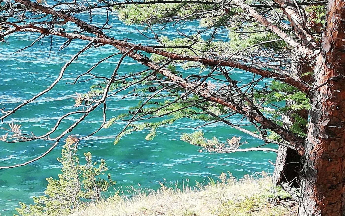 Czysta woda w Bajkale