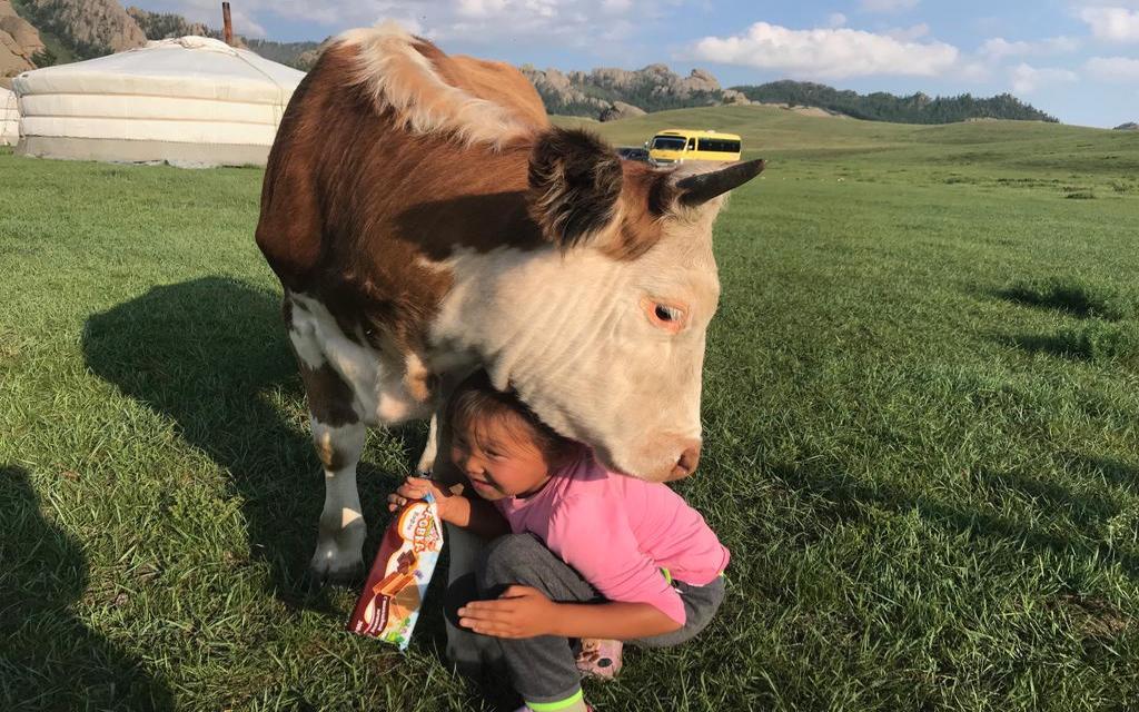 Bliskość zwierząt w Mongolii